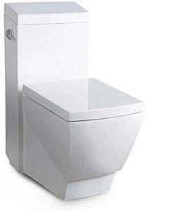 ARIEL Platinum TB336M Contemporary European Toilet