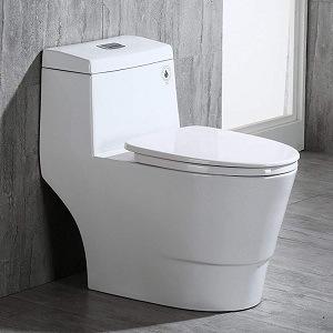 WoodBridge T-0001, Dual Flush Elongated One Piece Toilet