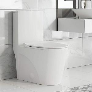 Best Swiss Madison Toilet
